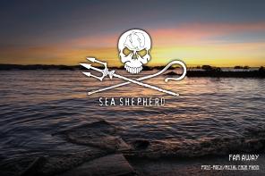 Sea Shepherd 01.jpg